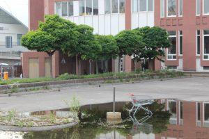 KFZ Unfall Gutachter in Ludwigshafen